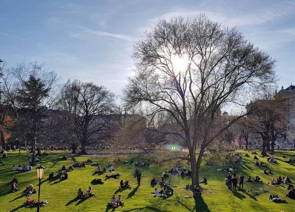 Park w Wiedniu